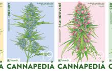 Cannapedia 2019 - Lunární kalendář konopných odrůd ve 4 unikátních edicích a se semínky právě v prodeji