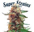 Super Strains - Enemy of the State